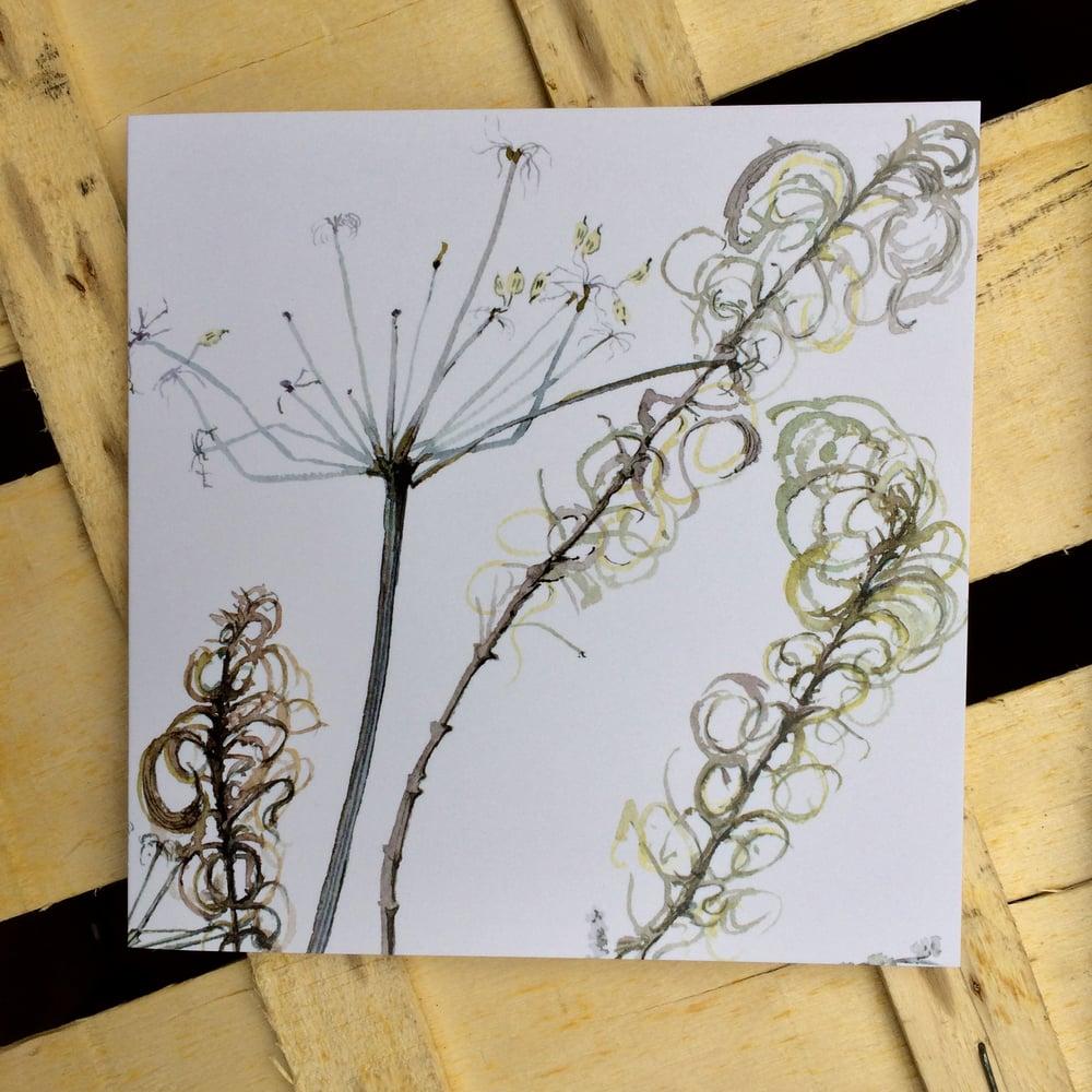 Image of Hogweed Greeting Card