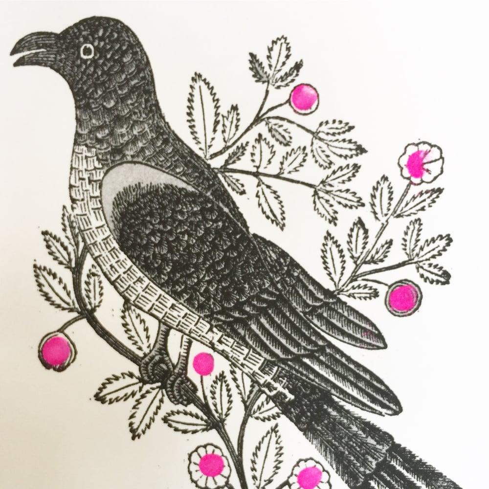 Image of Garden Bird