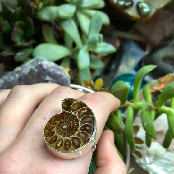"Image of ""Sacred Spiral"" Chunky Ammonite Sterling Silver Ring (8.5)"