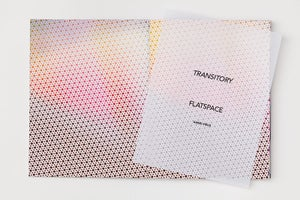 Image of Transitory Flatspace by Anne Vieux