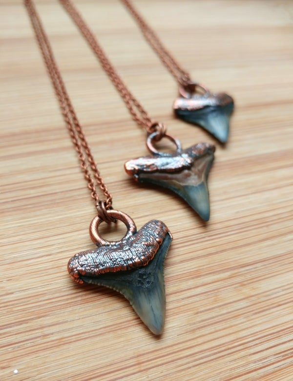 Image of Fossilized Shark Tooth Pendant