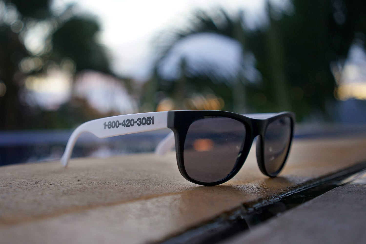 Image of Bargain Beach Sunglasses Model 001