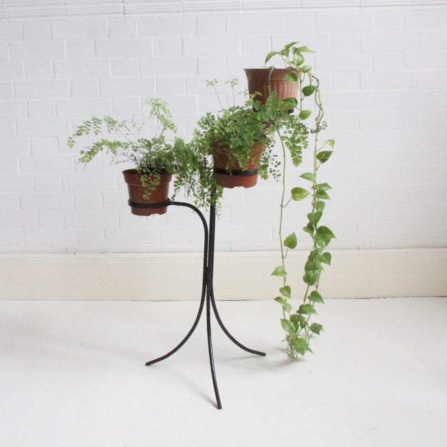 Image of Iron plant stand