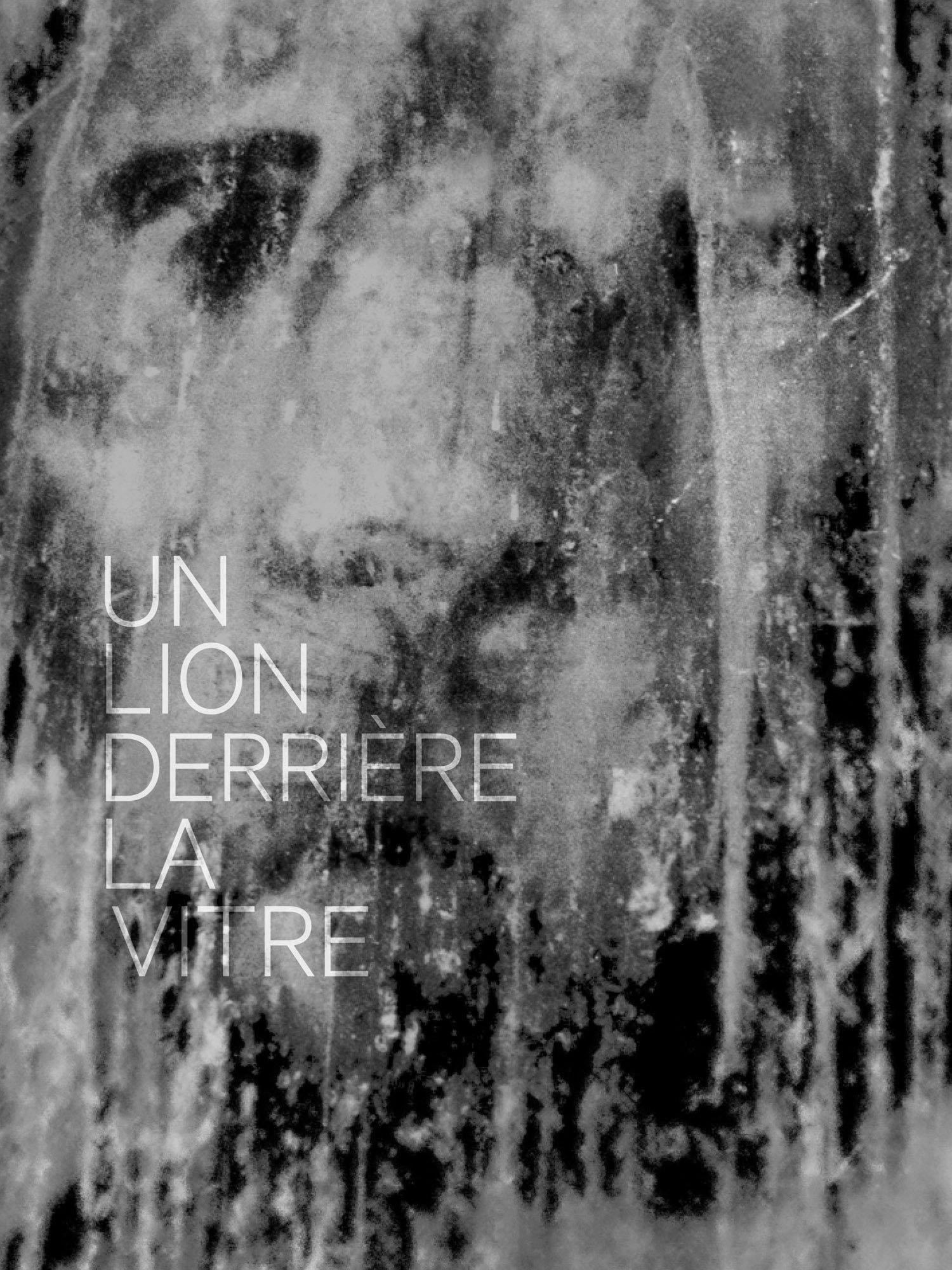 Image of UN LION DERRIERE LA VITRE ERIC LEBRUN