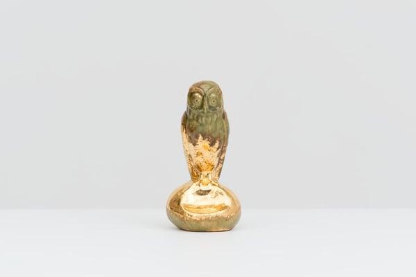 Image of Johan Creten - The Vivisector, Library Version