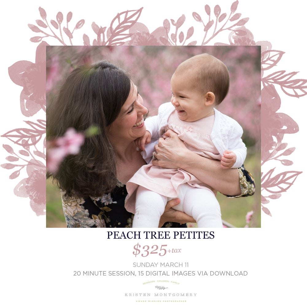 Image of Sunday March 11 - Peach Tree Session