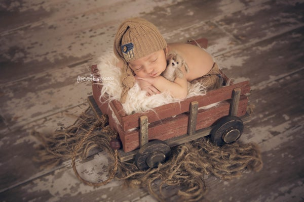 Image of Newborn Size, Bitsy, Hand Crafted, Barn Wood Wagon Prop