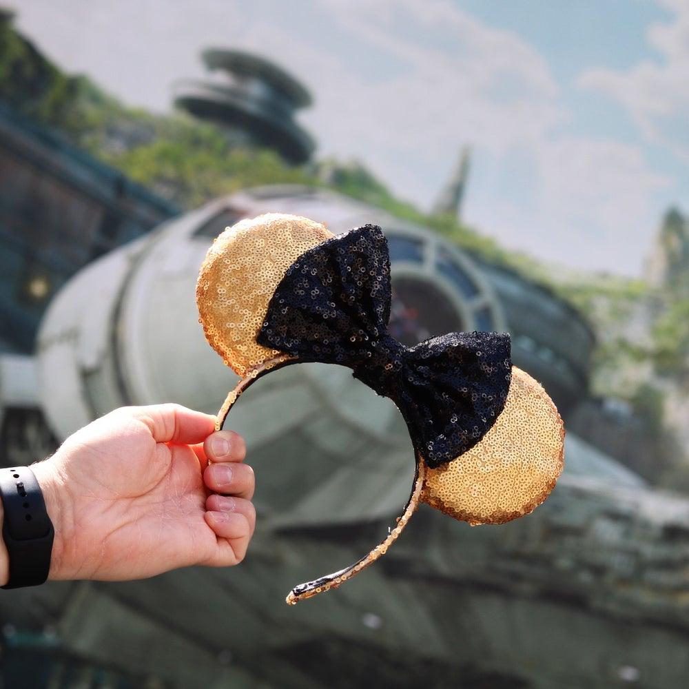 Image of Droid Sequin Ears