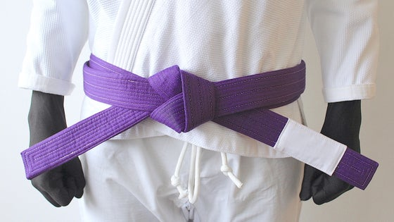 Image of PURE ピュア Purple belt