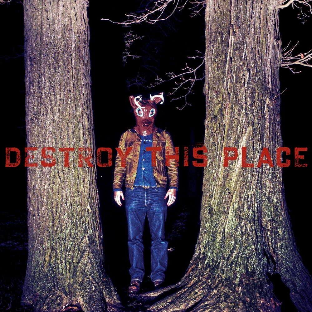 Image of Destroy This Place - Destroy This Place (2013) - LP + Download Code