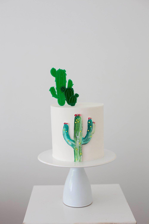 Image of Classic Cactus Set