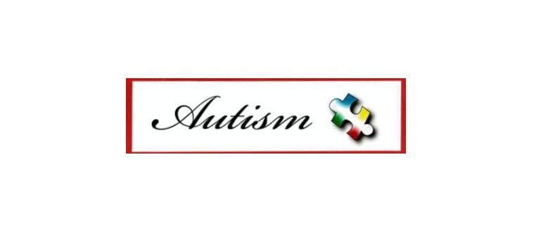 Image of Autism Sticker for car window/bumper