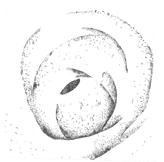 Image of Corpus Interius (Print)