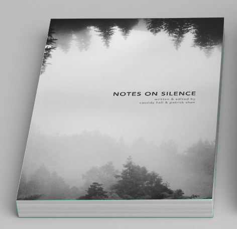 Image of 'Notes on Silence' Book