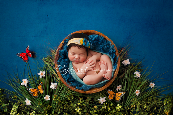 Image of Butterfly Kisses Digital Backdrop