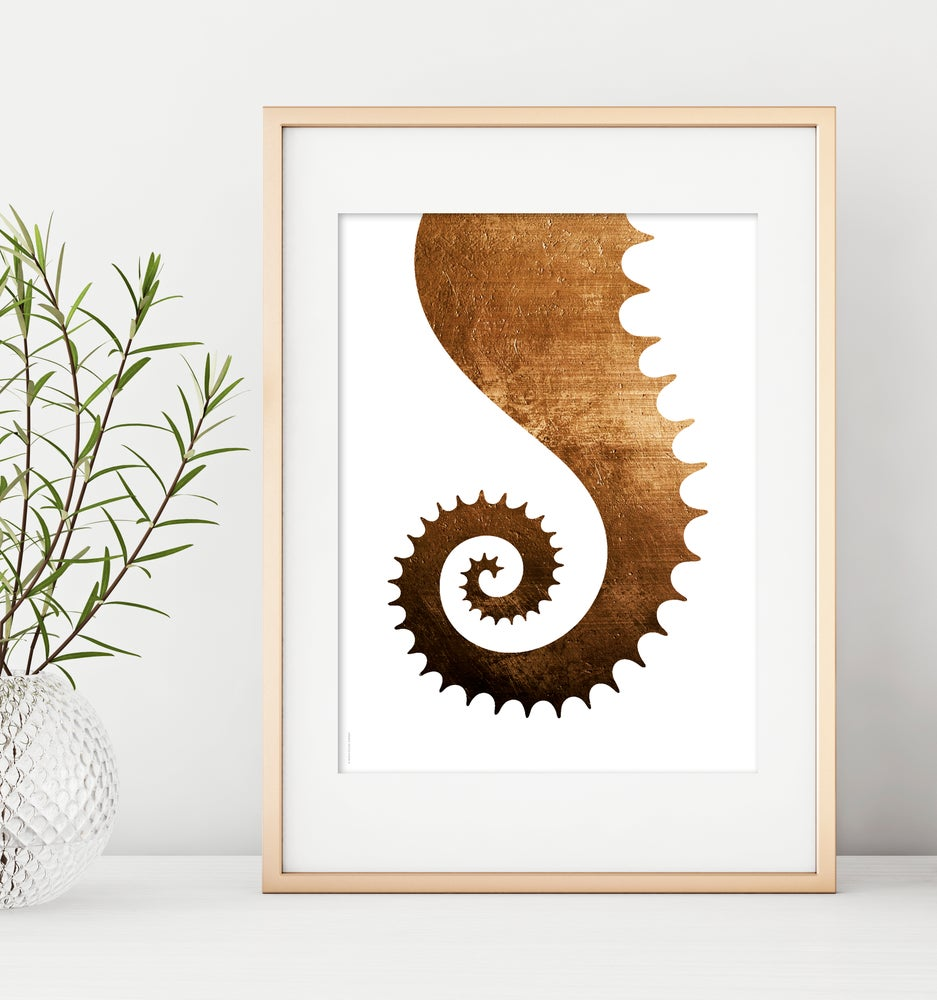 Image of Seahorse tail