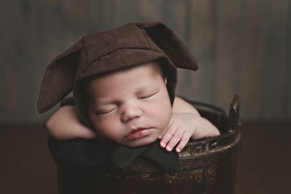Image of Puppy Newborn Bonnet