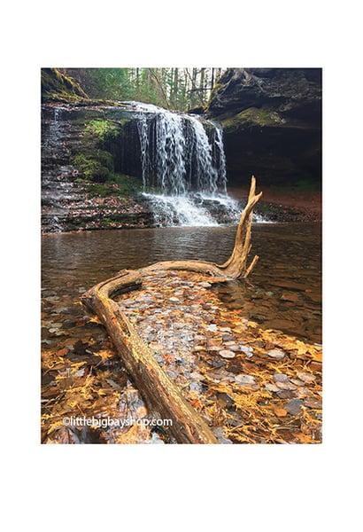 Image of Lost Creek Falls