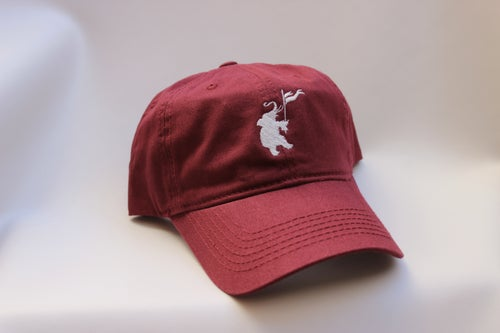 Image of ELEPHANT DAD HATS -CLICK FOR VARIETY OF COLORS