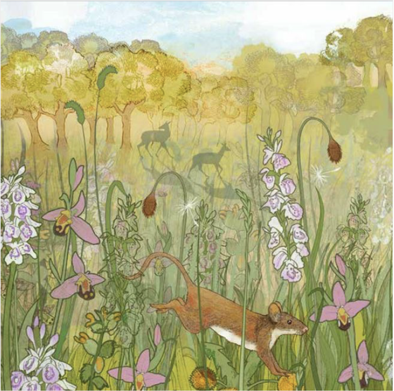 Image of Mouse Meadow - Greetings Card