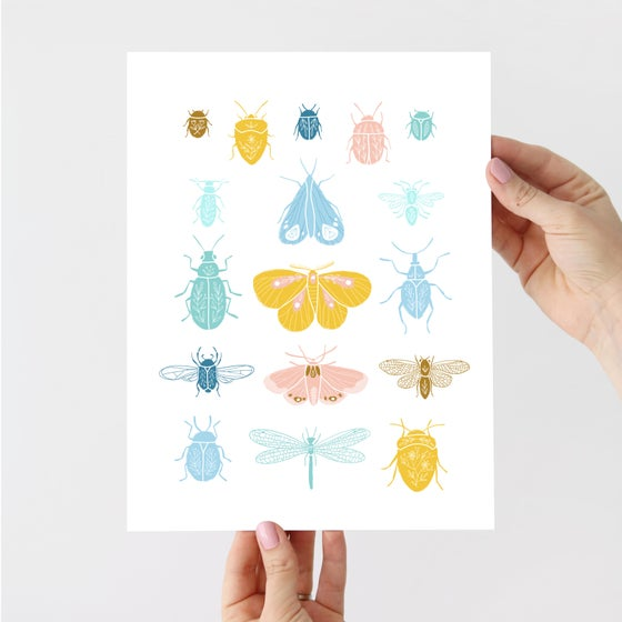 Image of Bugs and Moths Artist Print - PREORDER