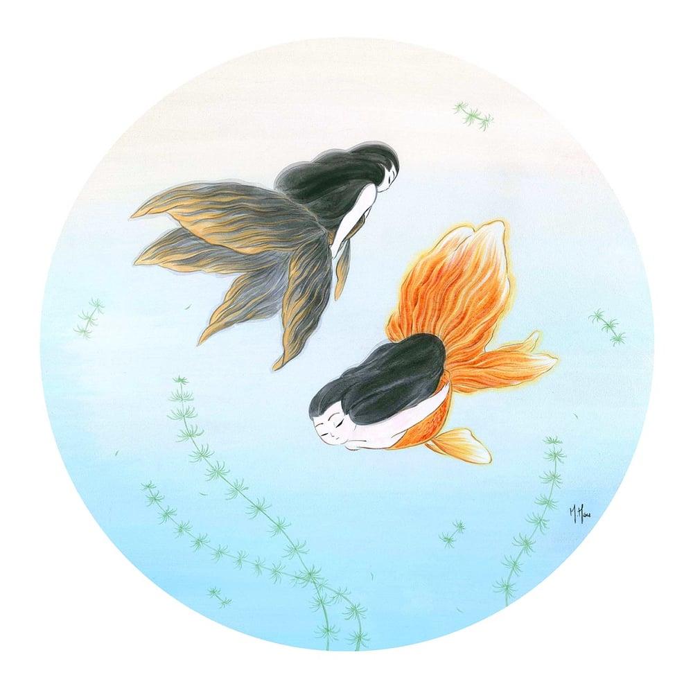 Image of Goldfish Mermaids