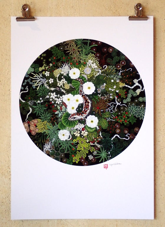 Image of 'Gecko and Alpine Ecosystem' A3 Print