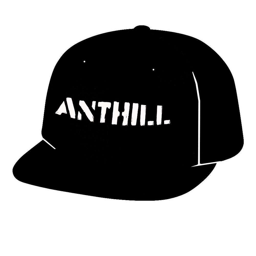 Image of ANTHILL Embroidered Flat Brim