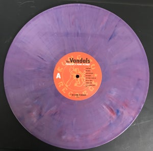 Image of Limited Fear of A Punk Planet Vinyl Autographed