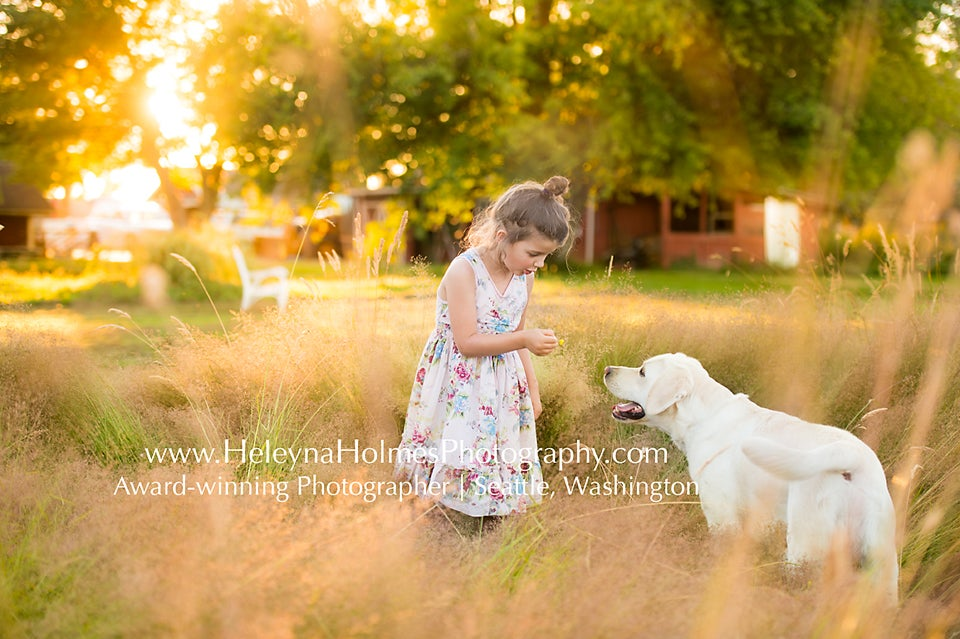 Image of Seattle Summer Days Photo Session