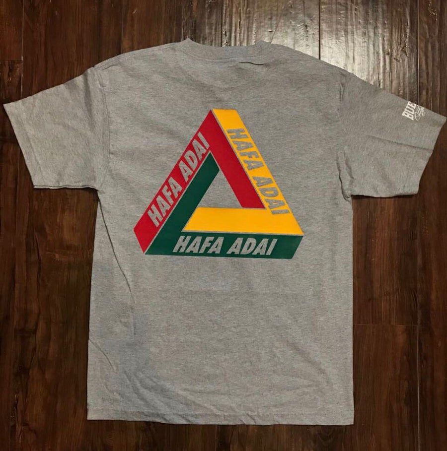 Image of BHA Triangle-063