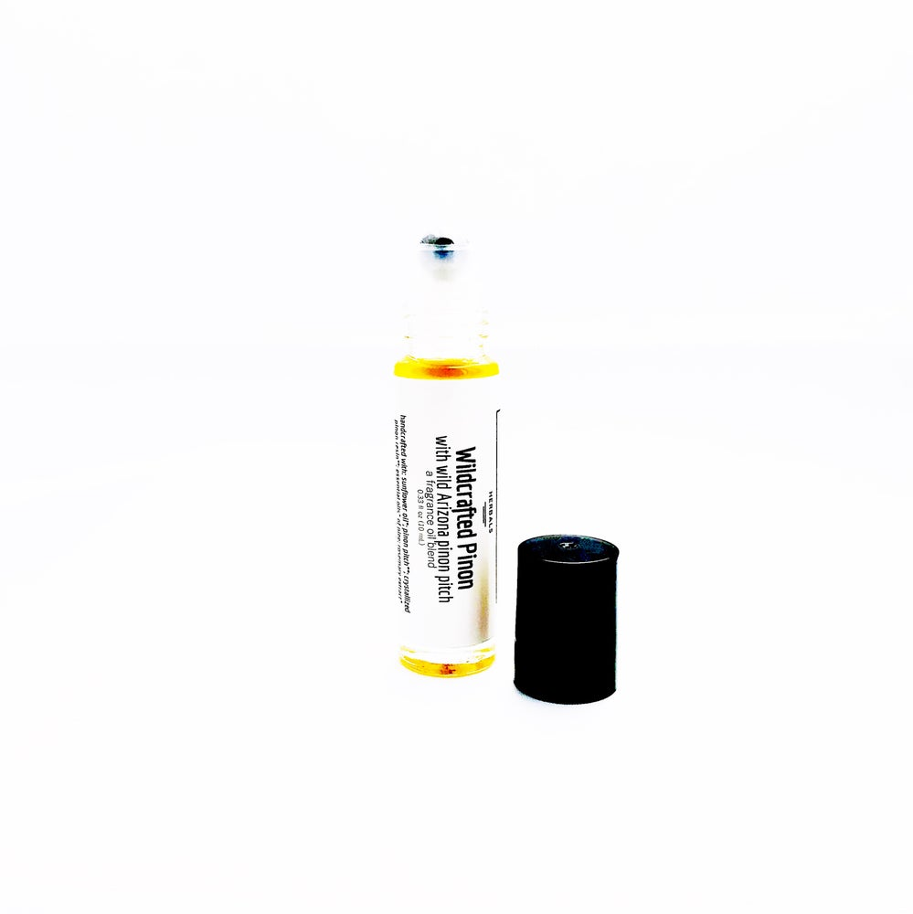 Image of Wildcrafted Piñon | Fragrance Oil Blend | Roll-On