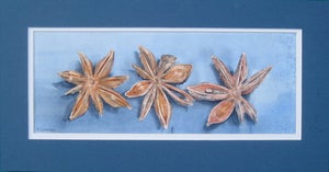 Image of Star Anise