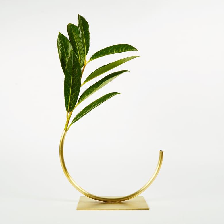 Image of Vase 543 - Best Practice Vase