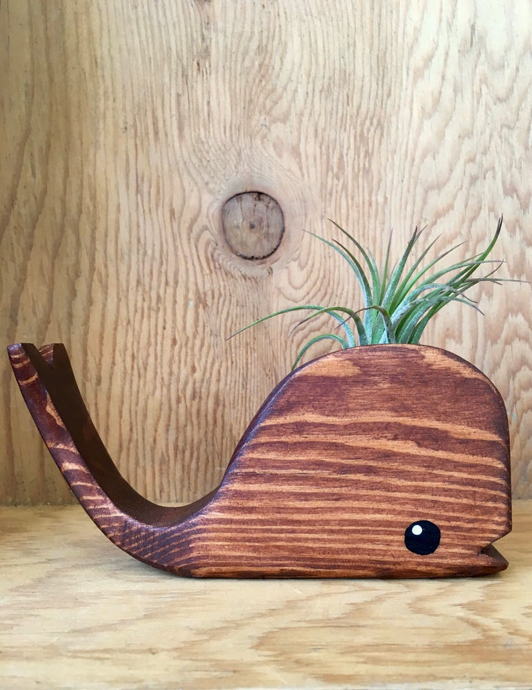 Image of Tiny Wooden Whale With Airplant - Walnut or Turquoise Stain