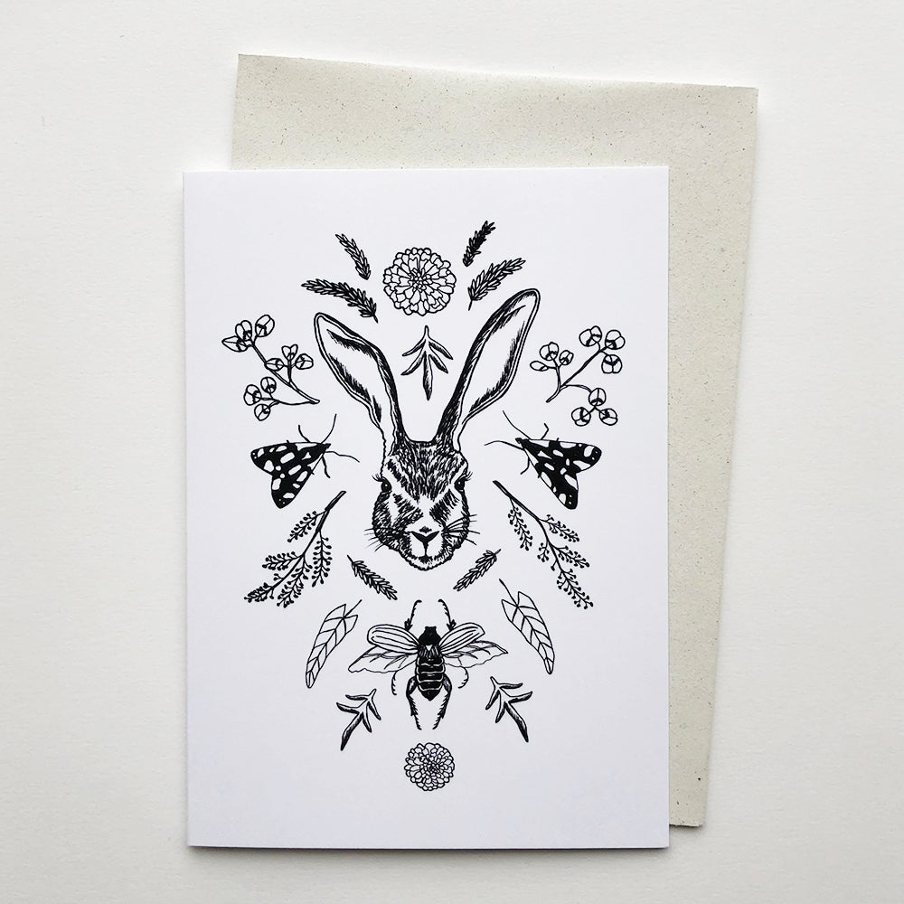 Image of Swedish nature card collection