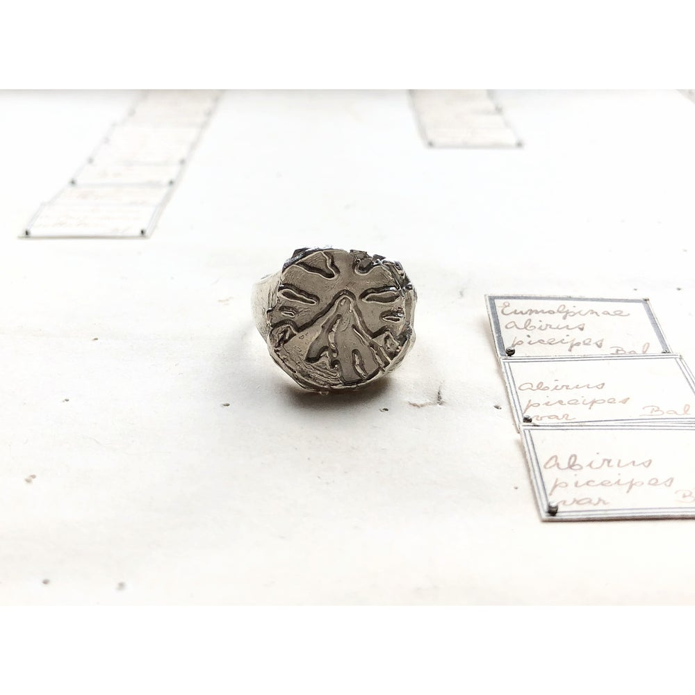Image of Keepers of the Privy Seal Ring - Floor