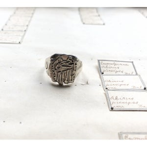 Image of Keepers of The Privy Seal Ring- Merijn