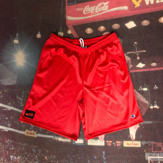 Image of Sole Food Kicks x Champion Mesh Shorts