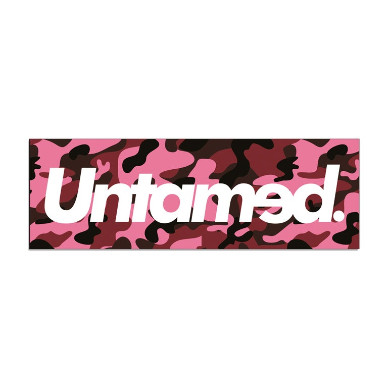 Image of Untamed - Pink Camo Box Sticker