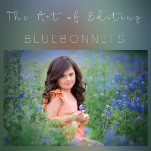 Image of The Art of Editing - Bluebonnets