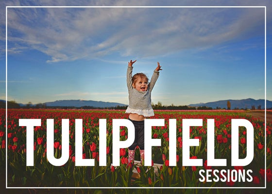 Image of TULIP SESSION