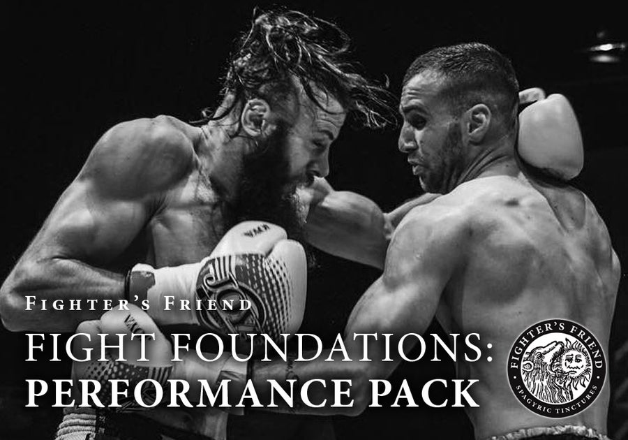 Image of FIGHT FOUNDATIONS: PERFORMANCE PACK