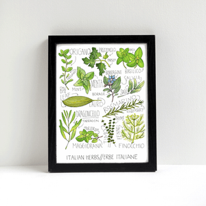 Italian Herbs Print by Alyson Thomas of Drywell Art. Available at shop.drywellart.com