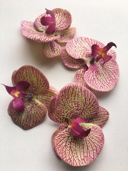 Image of FLOWER GANG Striped Orchid Earrings