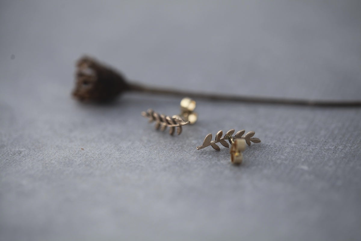 Image of (9ct gold or silver) fern leaf stud earrings