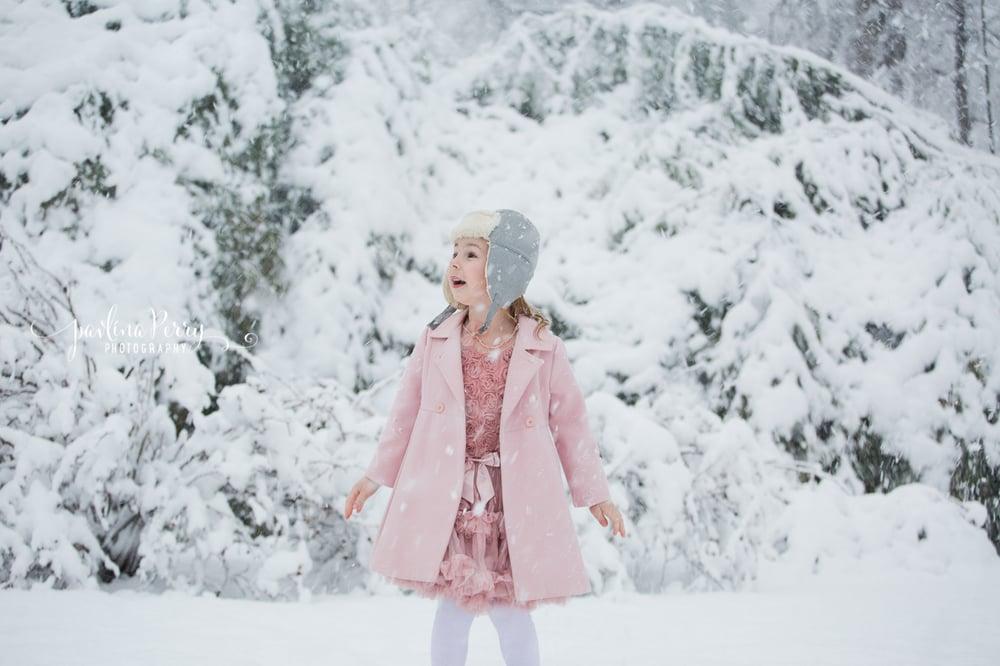Image of Winter Wonderland