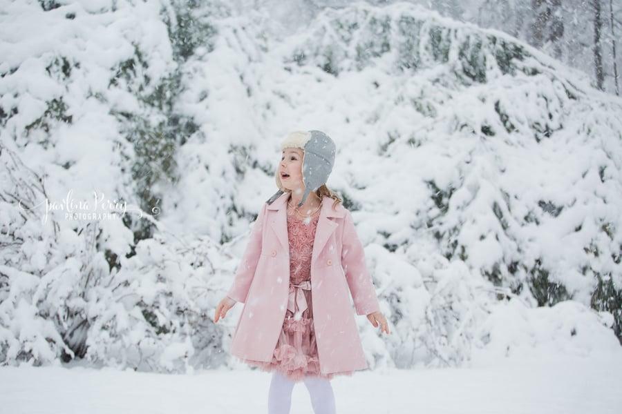 Image of Mini Winter Wonderland