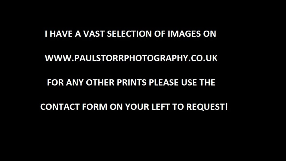 Image of Request A Print