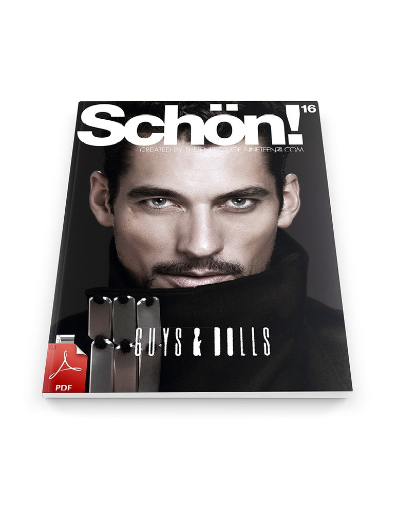 Image of Schön! 16 David Gandy / eBook download